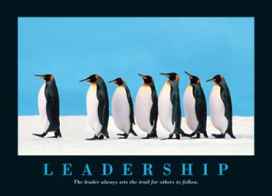 penguin_leadership